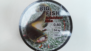 Broline Big Fish 0,60 100 m mm